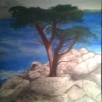 """Monterey Cypress/16"""" x 20"""""""